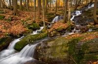 River Road Falls I