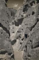 Bandelier Ladder I