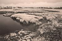 Biddeford Meander