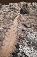 Path to Errant