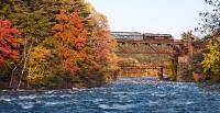 Train Over Bow Bridge