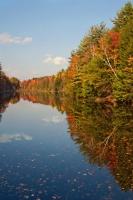 Foliage at Bucket Pond